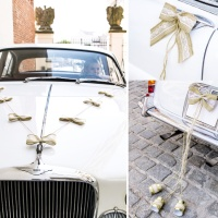 Kit decorativo para coche Natural Weddding